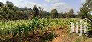 Ngong Zambia Plots for Sale | Land & Plots For Sale for sale in Kajiado, Ngong