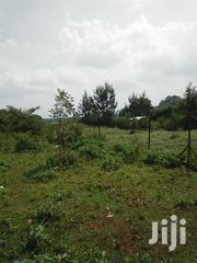 Plots For Sale | Land & Plots For Sale for sale in Busia, Marachi East