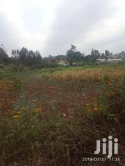 5 Acres Githogoro Runda Muringa | Land & Plots For Sale for sale in Kiambu, Township E