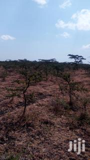 10 Acres for Sale | Land & Plots For Sale for sale in Kajiado, Keekonyokie (Kajiado)