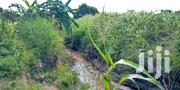 Land For Sale Kundutsi 26 Acres 250,000 Per Acre,   Land & Plots For Sale for sale in Kwale, Tsimba Golini