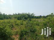 One and a Quater Acre | Land & Plots For Sale for sale in Kwale, Ukunda