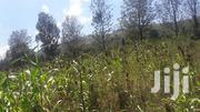Farming Land for Sale Subukia Nakuru County | Land & Plots For Sale for sale in Nakuru, Subukia