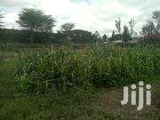 5 Acres for Sale in Maragua Near Pioneer School at 3m Per Acre | Land & Plots For Sale for sale in Murang'a, Makuyu