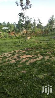One Hundred and Ten Acres for Sale Endebess Transnzoia | Land & Plots For Sale for sale in Trans-Nzoia, Endebess