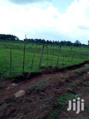 Land Ten Acres Beach Land | Land & Plots For Sale for sale in Uasin Gishu, Langas