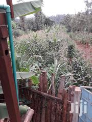 Commercial Land For Sale | Land & Plots For Sale for sale in Murang'a, Ng'Araria