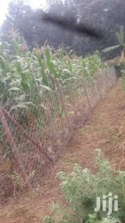 Quick Sale 1/8 of an Acre Ngong Bondeni | Land & Plots For Sale for sale in Kajiado, Ngong