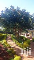 4 Bedroomed House In Kibiko   Houses & Apartments For Sale for sale in Ngong, Kajiado, Kenya