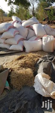 Beef Cattle Feeds:Cows,Goats And Camel | Feeds, Supplements & Seeds for sale in Machakos, Kithimani