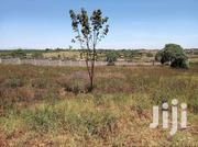 1/4 Acres Ruiru On A Controlled And Gated Estate On Special Offer | Land & Plots For Sale for sale in Kiambu, Township C