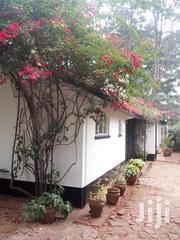 Esco Realtor Exclusive Stand Alone Bungalow in Lavington to Let. | Houses & Apartments For Rent for sale in Nairobi, Kileleshwa