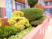 Apartment For Sale | Houses & Apartments For Sale for sale in Kiambu, Gitaru
