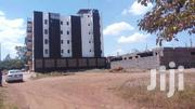 Come And See These 2 Sets Affordable 1/8 Acre (50*100)In Ruiru,Title | Land & Plots For Sale for sale in Kiambu, Murera