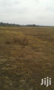 Kalichen, Off Kiganjo - Narumoro Road | Land & Plots For Sale for sale in Nyeri, Thegu River