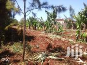 1/4 Of An Acre For Sale In Kiamumbi At 8.5m | Land & Plots For Sale for sale in Kiambu, Township E