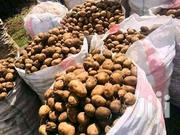 Shangi Potatoes Seeds | Feeds, Supplements & Seeds for sale in Nyeri, Naromoru Kiamathaga