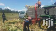 Silage Chopping/Making | Feeds, Supplements & Seeds for sale in Kiambu, Lari/Kirenga