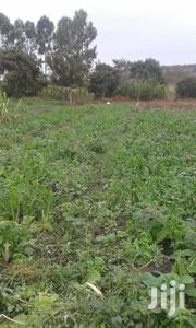 Plot Plot For Sale | Land & Plots For Sale for sale in Kiambu, Kamenu