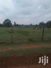 Land 5 Acers In Soy With Ready Title Deed | Land & Plots For Sale for sale in Uasin Gishu, Soy