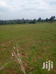 7acres for Sale | Land & Plots For Sale for sale in Kericho, Litein