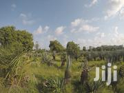 Prime Plots for Sale in Vipingo | Land & Plots For Sale for sale in Mombasa, Bamburi