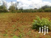 50x100ft Residential Plots for Sale at Mwea in Kirinyaga County. | Land & Plots For Sale for sale in Kirinyaga, Mutithi
