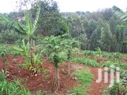 Embu Town 100 By 100 (1/4) Acre In 2 Acres Land   Land & Plots For Sale for sale in Embu, Central Ward