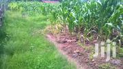 Its A 6 Acres Land With Title | Land & Plots For Sale for sale in Kericho, Londiani