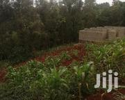 Plot for Sale in Karura Ndenderu 40 by 80 | Land & Plots For Sale for sale in Kiambu, Ndenderu