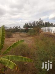Land for Sale | Land & Plots For Sale for sale in Murang'a, Kimorori/Wempa