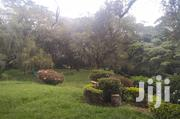 Lovely Four Bedroom Bungalow. | Houses & Apartments For Rent for sale in Nairobi, Karen