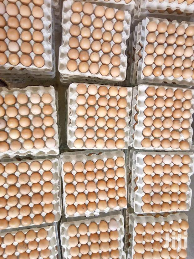 Archive: Eggs For Sale