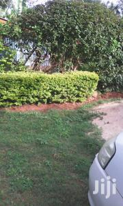 Tested and Proven Plots Garissa Rd. | Land & Plots For Sale for sale in Machakos, Matuu