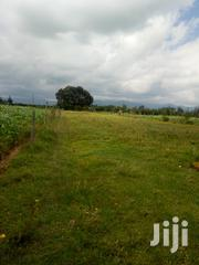 1/2an Acre Land for Sale in Kinangop Near Muruaki High School | Land & Plots For Sale for sale in Nyandarua, Weru