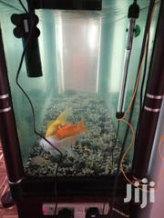 Curved Fish Tank With Cabinets | Pet's Accessories for sale in Nairobi, Nairobi South