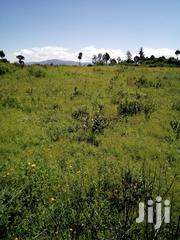 One Acre Agricultural Land at Daiga, Nanyuki | Land & Plots For Sale for sale in Laikipia, Nanyuki