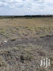 1/4 Acre Plots for Sale in Kamulu | Land & Plots For Sale for sale in Nairobi, Ruai