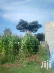 1/8 Acre Thunguma, Nyeri | Land & Plots For Sale for sale in Nyeri, Ruring'U