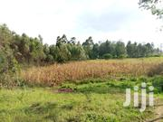200ft By 70ft Prime Land For Quick Sale | Land & Plots For Sale for sale in Kisii, Boochi/Tendere