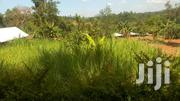 Land In Endeli For Quick Sale 800m From Mbale | Land & Plots For Sale for sale in Vihiga, Lyaduywa/Izava