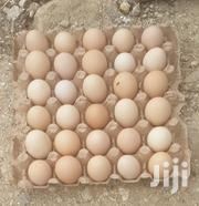 Kari Kienyeji Fertilised EGGS | Meals & Drinks for sale in Mombasa, Bamburi