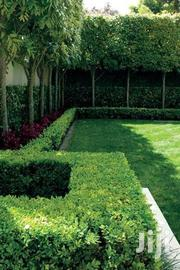 Landscaping Services | Landscaping & Gardening Services for sale in Nairobi, Nairobi Central