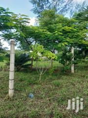 Diani Half Acre | Land & Plots For Sale for sale in Kwale, Kinondo