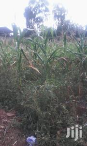 1/2acre Plot for Sale at Ongata Rongai- Masai Lodge | Land & Plots For Sale for sale in Kajiado, Ongata Rongai