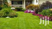 Landscaping & Gardening Services | Landscaping & Gardening Services for sale in Nairobi, Nairobi Central