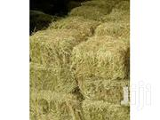 Best Quality Of Hay.. | Feeds, Supplements & Seeds for sale in Kiambu, Murera