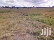 Thika Makongo Town | Land & Plots For Sale for sale in Nairobi, Njiru