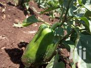 Capsicum - Pili Pili Hoho | Meals & Drinks for sale in Uasin Gishu, Huruma (Turbo)