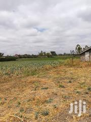 Agricultural Land | Land & Plots For Sale for sale in Machakos, Kinanie